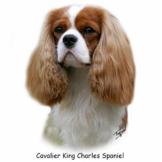 Perro de aguas de rey Charles arrogante Escultura Fotografica