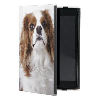 Perro de aguas de rey Charles arrogante que se sie iPad Mini Fundas