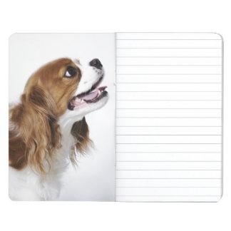 Perro de aguas de rey Charles arrogante, vista lat Cuadernos