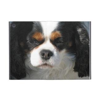 Perro de aguas de rey Charles iPad Mini Coberturas