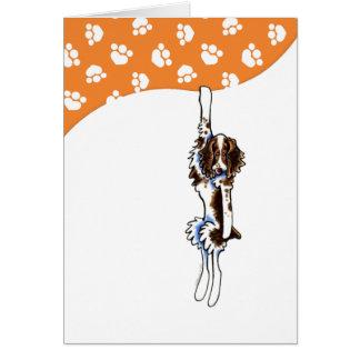 Perro de aguas de saltador ceñido tarjeta