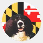 Perro de aguas de saltador de Maryland Pegatinas Redondas