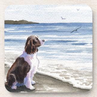 Perro de aguas de saltador en la playa posavasos de bebidas