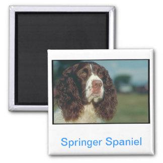 Perro de aguas de saltador inglés imán cuadrado