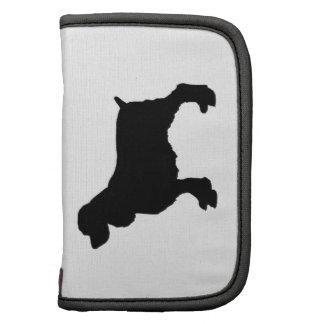 Perro de aguas de saltador inglés Silhoutee, Planificador