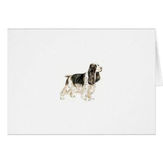 Perro de aguas de saltador inglés tarjetas