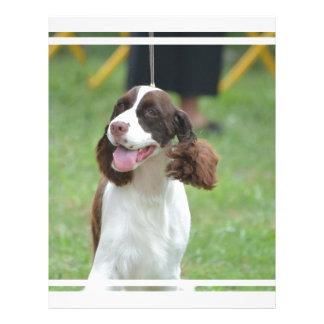 Perro de aguas de saltador lindo plantillas de membrete