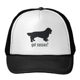 Perro de aguas de Sussex Gorro