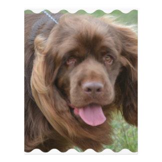 Perro de aguas de Sussex Membretes Personalizados