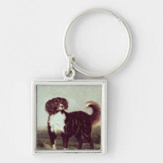 Perro de aguas llaveros personalizados