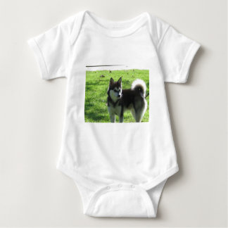 Perro de Alaska de Klee Kai Body Para Bebé