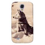 Perro de Alaska Iditarod