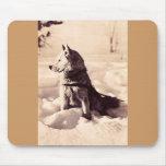 Perro de Alaska Iditarod Tapetes De Ratón