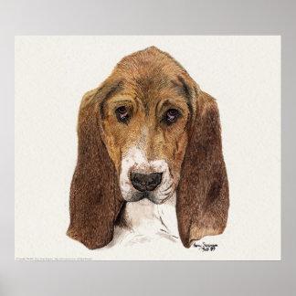 Perro de Basset Hound, acuarela Póster