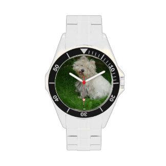 Perro de Bichon Frise Relojes De Pulsera