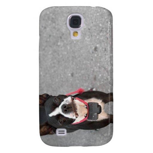 Perro de Boston Terrier Funda Para Galaxy S4