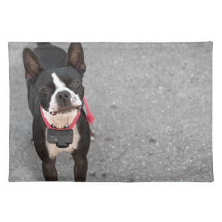 Perro de Boston Terrier Mantel