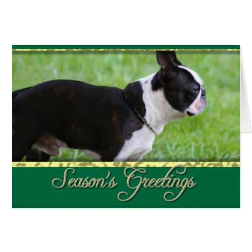 Perro de Boston Terrier Tarjeta De Felicitación