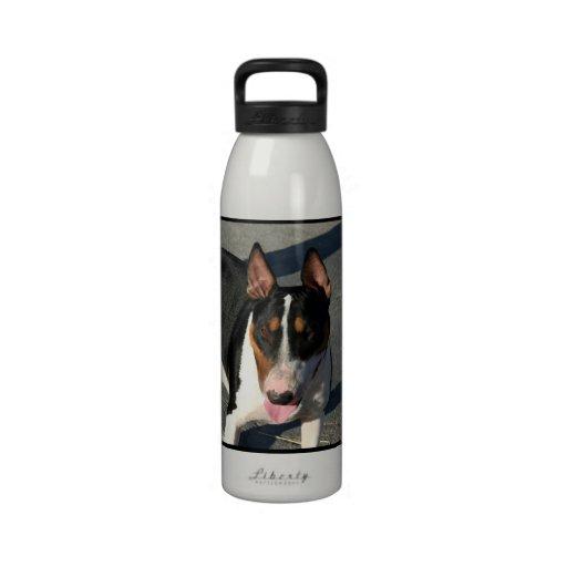 Perro de bull terrier del inglés botella de agua reutilizable