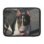 Perro de bull terrier del inglés funda  MacBook