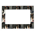 Perro de bull terrier del inglés marcos magnéticos