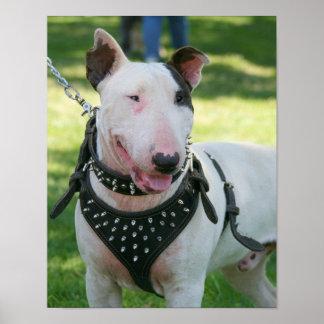 Perro de bull terrier impresiones