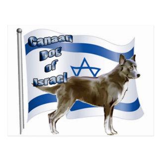 Perro de Canaan de Israel Postales