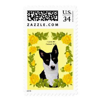 Perro de Canaan y rosas amarillos Timbre Postal