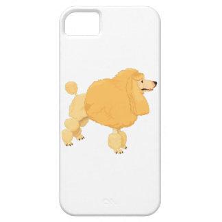 Perro de caniche amarillo iPhone 5 fundas