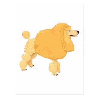 Perro de caniche amarillo postales