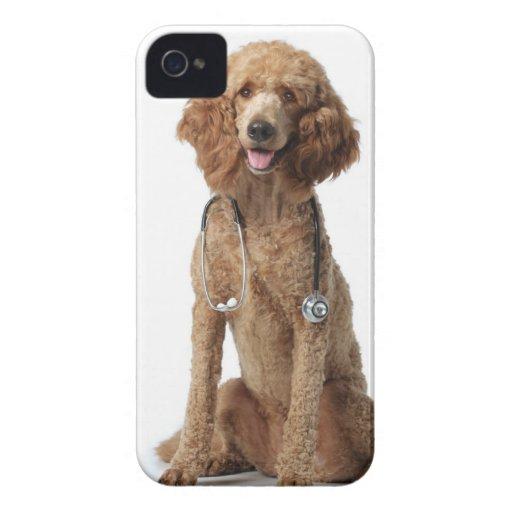 Perro de caniche de oro que lleva un estetoscopio Case-Mate iPhone 4 fundas