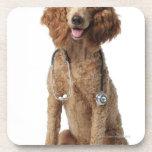 Perro de caniche de oro que lleva un estetoscopio posavaso