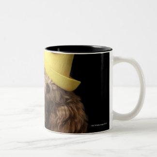 Perro de caniche de oro que lleva un gorra taza de dos tonos