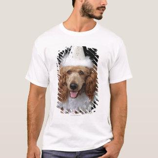 Perro de caniche de oro que lleva un traje blanco playera