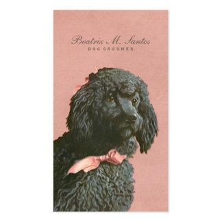 Perro de caniche del vintage que prepara elegante tarjetas de visita