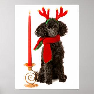 Perro de caniche negro de juguete del navidad vest póster
