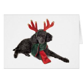 Perro de caniche negro de juguete del navidad vest tarjeton