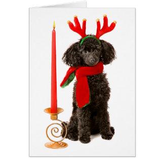 Perro de caniche negro de juguete del navidad vest felicitacion