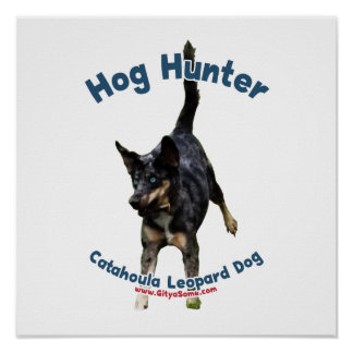 Perro de Catahoula del cazador del cerdo Posters