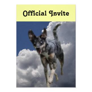 """Perro de Catahoula que corre en nubes blancas Invitación 5"""" X 7"""""""