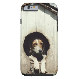 Perro de caza en casa de perro funda de iPhone 6 tough