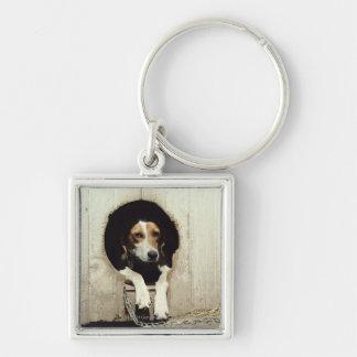 Perro de caza en casa de perro llavero personalizado