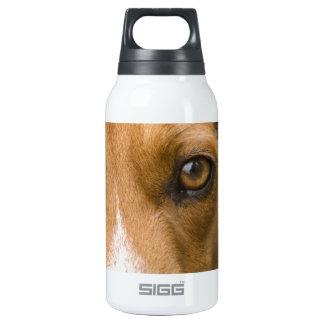 Perro de caza leal del perro del beagle