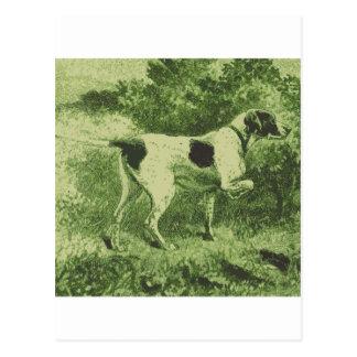 Perro de caza postales