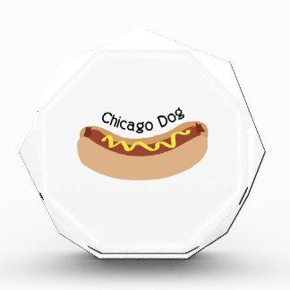 Perro de Chicago