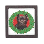 Perro de Corso del bastón del navidad Caja De Joyas De Calidad