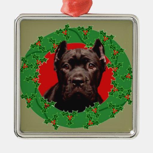 Perro de Corso del bastón del navidad Adorno De Navidad