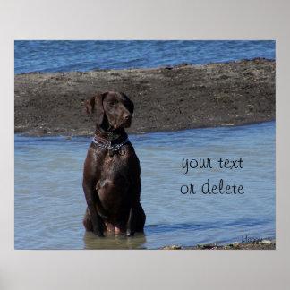 ¿Perro de encargo en el Agua del lago cuál es él q Poster