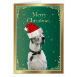 Perro de great dane en tarjeta de Navidad roja del