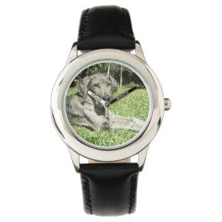 Perro de great dane reloj de mano